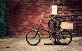 Обои велосипед, фото, стена, обои, разное, wallpapers, кирпичная