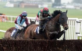 Обои Jumps, Jockey, Races, Yorkshire, Horse