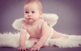 Картинка крылья, малыш, ребёнок, агелочек
