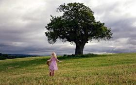 Картинка поле, дерево, настроение, девочка