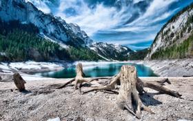 Обои горы, озеро, коряги