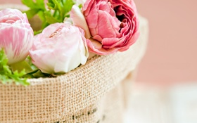 Обои цветы, букет, лепестки