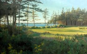 Обои пейзаж, река, лето, Sandra Corpora, лес, озеро, поляна