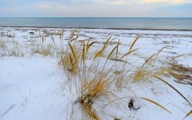 Картинка море, небо, трава, облака, снег, берег