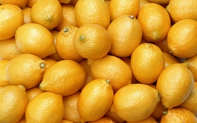 Обои yellow, fruit, lemons