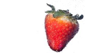 Обои вода, пузырьки, клубника, ягода, воздух