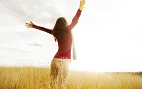 Картинка поле, свобода, девушка, солнце, макро, фон, widescreen