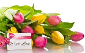 Обои with love, бант, тюльпаны, romantic, tulips, любовь, букет