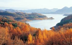 Картинка осень, лес, горы, озеро, Korea, Chungjuho lake