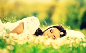 Обои зелень, трава, девушка, солнце, макро, цветы, природа