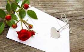 Обои сердце, роза, кулон, цепочка, красная, конверт