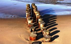 Обои песок, море, пенек, бревна, тени, ряды, пеньки