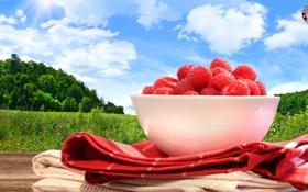 Картинка природа, малина, ягода