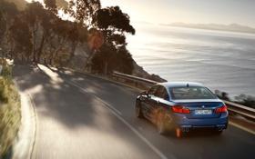 Обои дорога, море, car, машина, вода, солнце, деревья