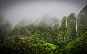 Картинка горы, Гавайи, Hawaii, tropics, Oahu, водопады., Jungle Highhlands