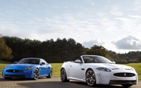 Обои белый, небо, деревья, синий, купе, Jaguar, ягуар