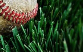 Обои газон, трава, бейсбольный мяч