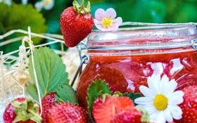 Обои цветы, ягоды, ромашки, клубника, банка, джем, варенье