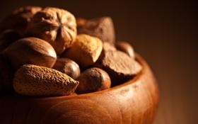 Обои фон, орехи, миндаль, фундук, плошка, лесные, грецкие