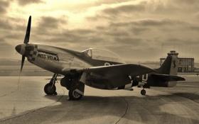 Обои Mustang, истребитель, P-51D, одноместный