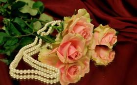Картинка фон, розы, материя, зеркало, бусы