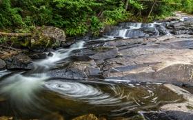 Обои лес, река, скалы, деревья, поток, ручей, камни