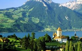 Картинка пейзаж, горы, природа, река, фото, замок, Шильонский