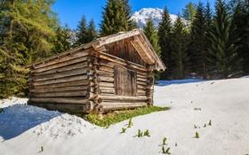 Картинка зима, лес, солнце, снег, деревья, горы, дом
