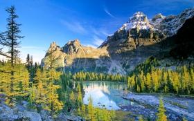 Картинка осень, небо, деревья, горы, озеро, река