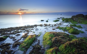Обои море, водоросли, камни, побережье, дымка, франция
