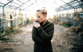 Обои greenhouse, девушка, теплица