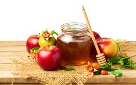Обои яблоки, мед, honey, листики, leaves, гранат, веточки