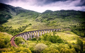 Картинка зелень, деревья, пейзаж, мост, природа, Шотландия, виадук