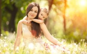 Обои солнце, природа, семья, одуванчики, обьятие, счатье, Мама и дочка