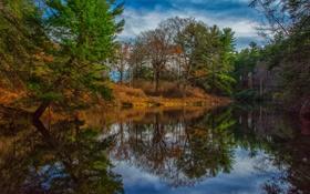 Обои осень, лес, небо, облака, деревья, река