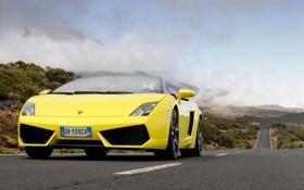 Обои обои, машины, lamborghini, дорога, авто, ламборджини, gallardo lp560