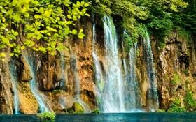 Картинка деревья, скала, водопад, мох, поток, водяной, красивый