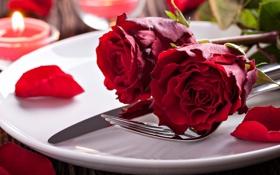 Обои цветы, розы, свечи, лепестки, тарелка, посуда, красные