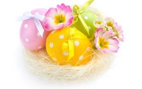 Обои цветы, яйца, весна, пасха
