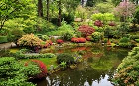 Обои дизайн, камни, дорожка, пруд, Portland, США, Oregon
