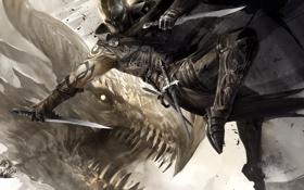 Обои дракон, воин, арт, guild wars, кинжалы