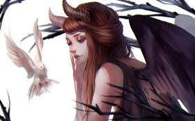 Обои птица, голубь, Девушка, крылья, рога