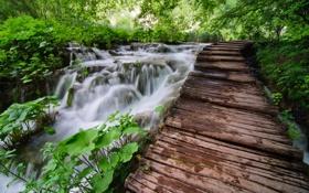 Картинка природа, река, мост