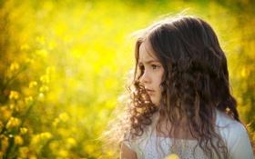 Обои лето, цветы, природа, ребенок, девочка