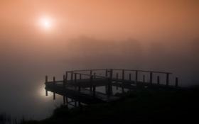 Картинка солнце, деревья, туман, озеро, рассвет, берег, утро