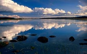 Картинка Небо, Вода, Природа, Облака, Отражение, Фото, Трава