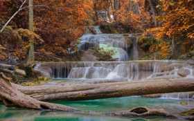 Обои осень, лес, природа, водопад, поток, forest, стволы деревьев