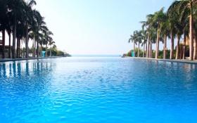 Обои бассейн, пальмы, океан