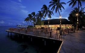 Картинка пальмы, океан, вечер, ресторан