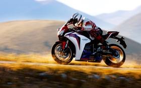 Обои горы, скорость, мотоцикл, honda, гонщик, хонда, 1000